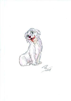 dabbie rysunek piotr teodorczyk