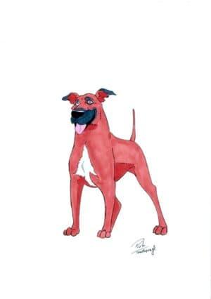 piotr teodorczyk rysunki